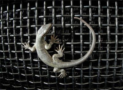 icon-lizard-on-grill.jpg
