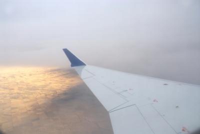 planewing.jpg