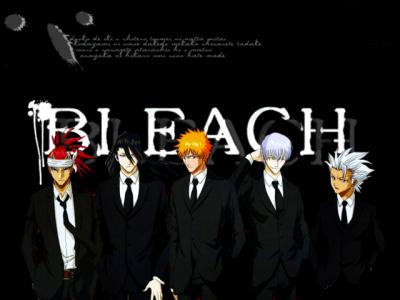 bleach15.png