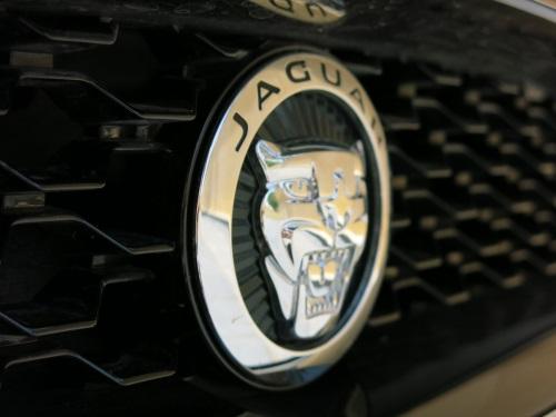 JaguarFType12