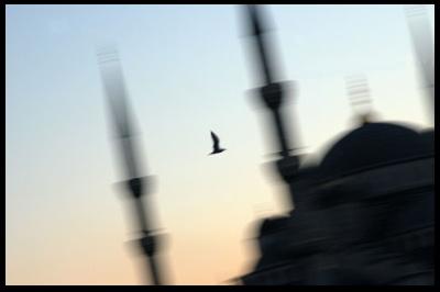 blue-mosque-sunset.jpg