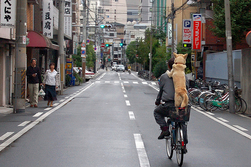 OsakaBikeDog