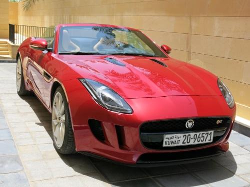 JaguarFType07
